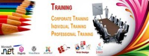 Top Software Training Institutes Ranking In Vijayawada
