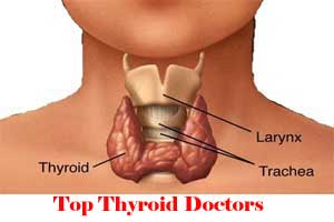 City Wise Best Thyroid Doctors In India